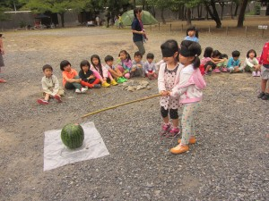 15watermelon1